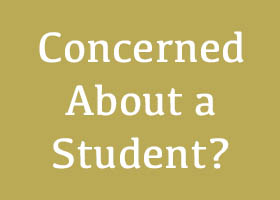 If You Are Concerned About a Student!